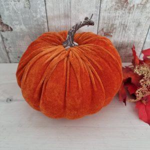 velvet orange pumpkin